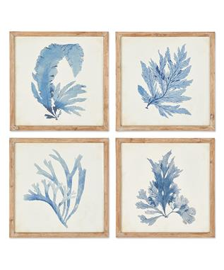 FRAMED CORAL WATERCOLOR PRINTS