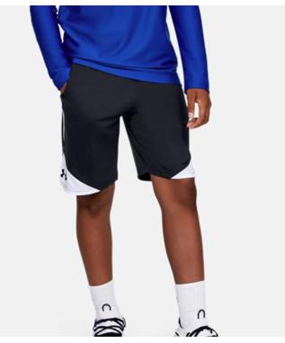 UA Stunt 2.0 Shorts