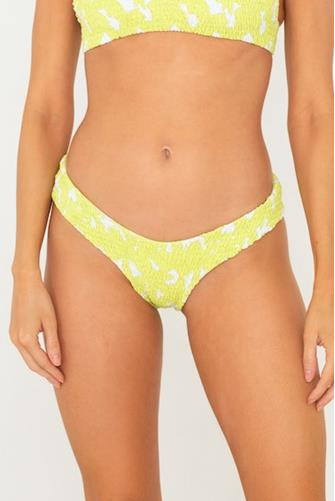 Lime Jasmine Lila Bikini Bottom LIME
