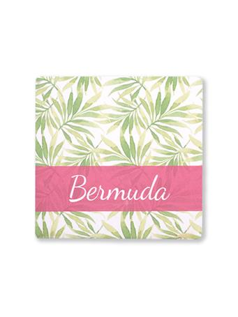 Bermuda Palm Tree Leaves Coaster No Color
