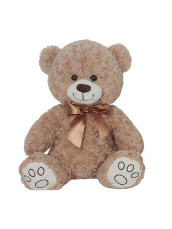 PAWS TEDDY BEAR ASST