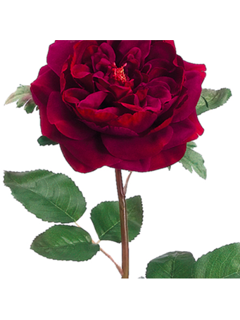 FAUX FLOWER - English Rose Spray No Color