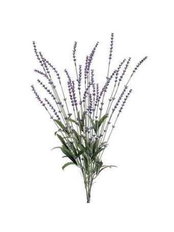 "23"" Lavender Bush BUSH-LAV"