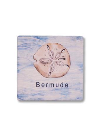 Bermuda Sand Dollar Coaster No Color
