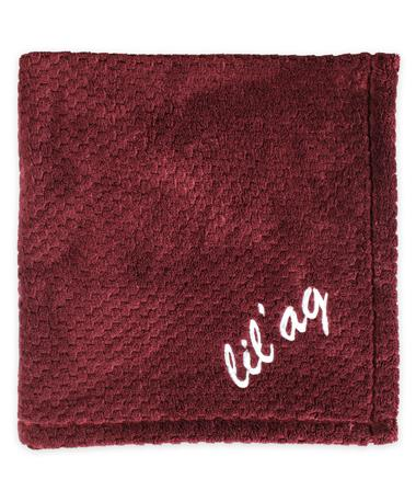 Texas A&M Lil' Ag Pineapple Stitch Baby Blanket