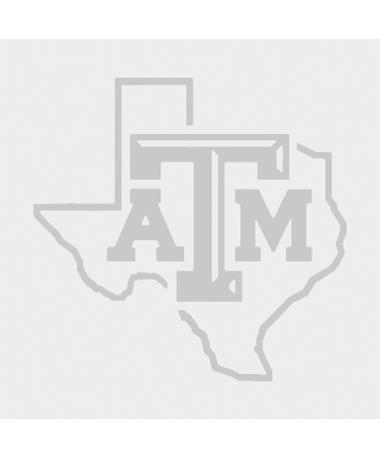 """Texas A&M Lone Star Bevel Brushed Chrome 3"""" Car Decal"""