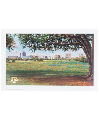 Texas A&M Benjamin Knox Texas A&M Campus View Print
