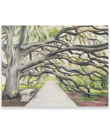 Century Tree Card