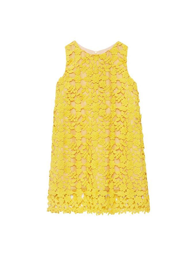 Scoop Neck Lace Dress