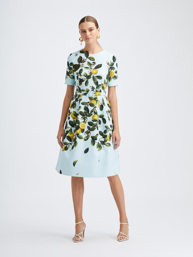 Citrus Primavera Belted Day Dress